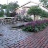 grafted lilac trees as focal point of reclaimed paver patio
